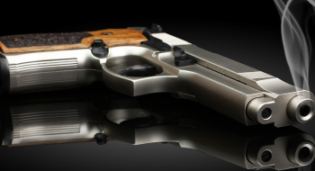 pistolaweb1